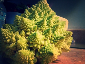 Romanesco gypsy cauliflower